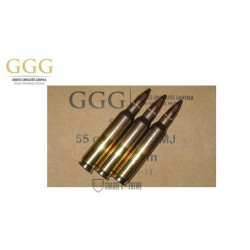 1000 MUNITIONS GGG 55 GR CAL 223 REM FMJ