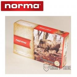 20 MUNITIONS NORMA CAL 30-06-180 GR POINTE PLASTIQUE