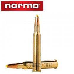 20 MUNITIONS NORMA CAL 7x65R-170GR POINT PLASTIQUE